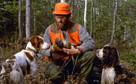 Not all the best grouse hunting is found on private property. Here are some great places to hunt on