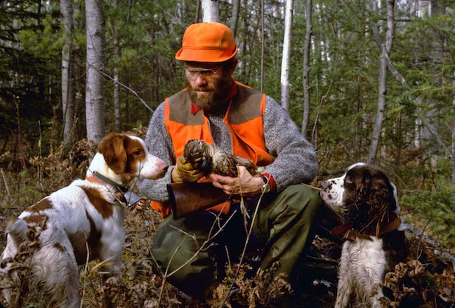 The Public Side of Wisconsin Grouse Hunting
