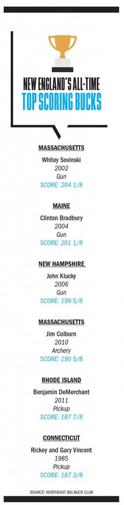New England Trophy Bucks Graphic