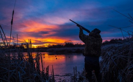 We are lucky to have such a variety of waterfowl hunting opportunities in our state. Here's a