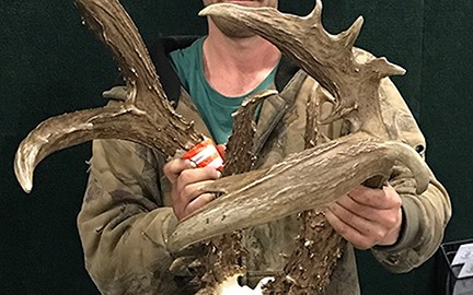 Each autumn a handful of Oklahoma hunters are fortunate enough to bag whitetail bucks that not only