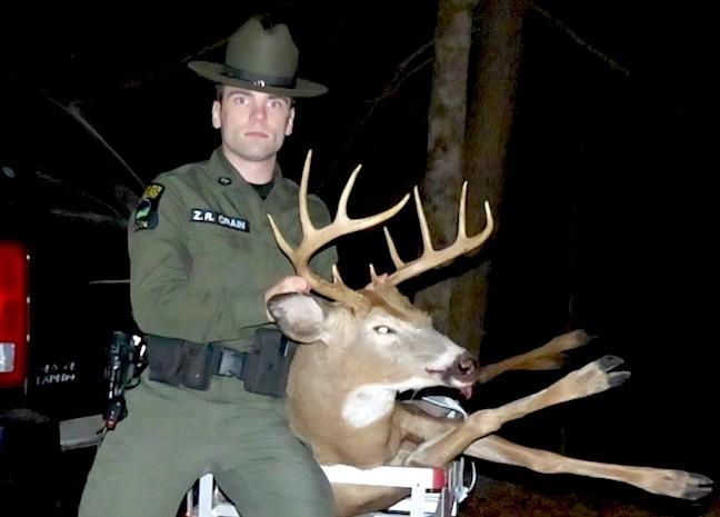 poaching news