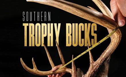 Sothern-Trophy-Bucks