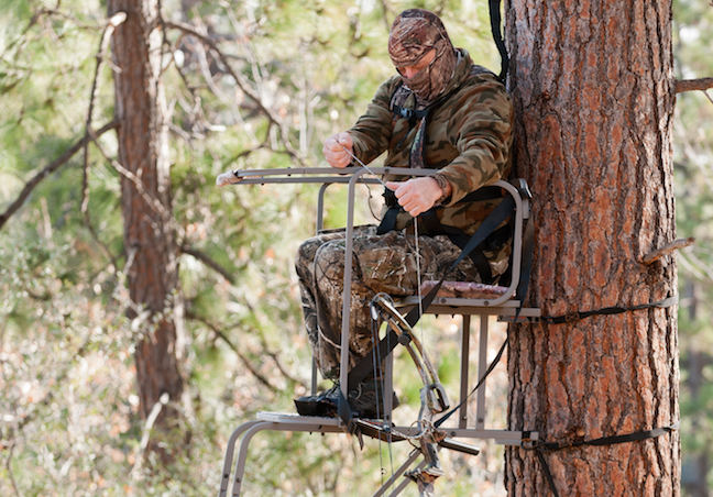 tree stands