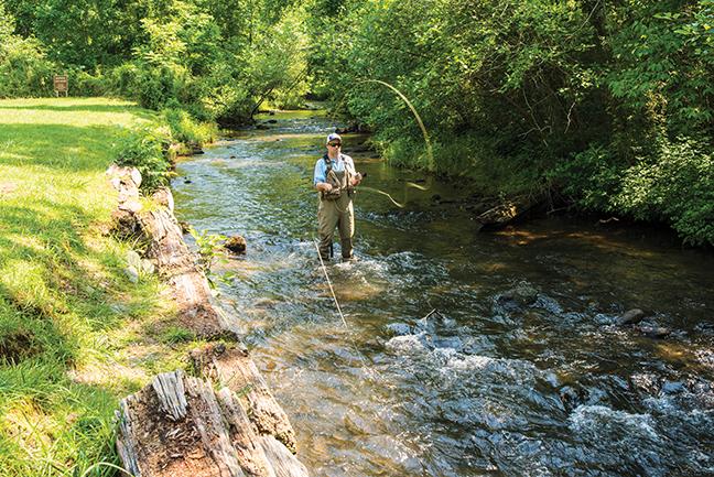 GA Vacation Lodge Fishing