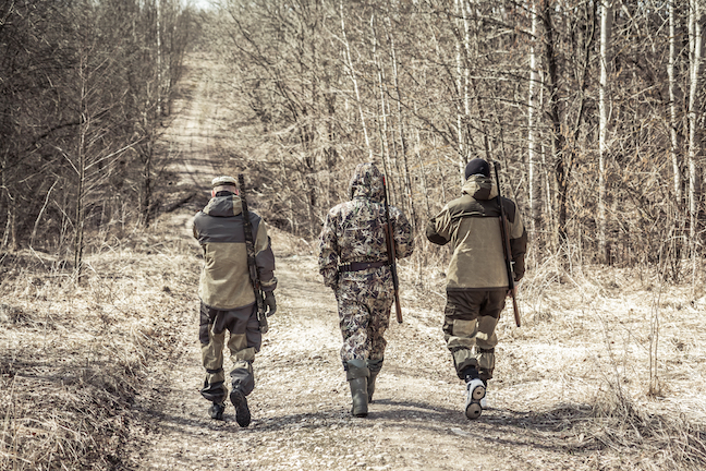 guided hunt