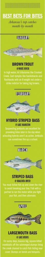 AR Fishing Calendar 1