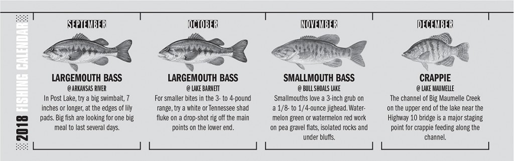 AR Fishing Calendar 3