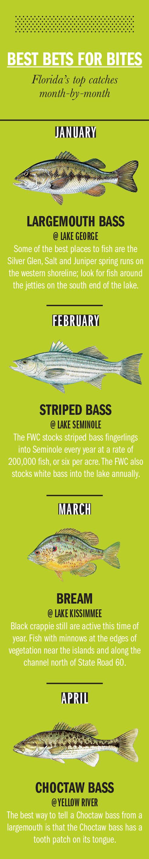 2018 florida fishing calendar game fish for Florida game fish