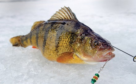 march fishing in Michigan