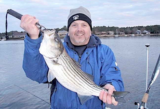Despite Big Chill, Stripers Seem Immune to 'Cold Stun'