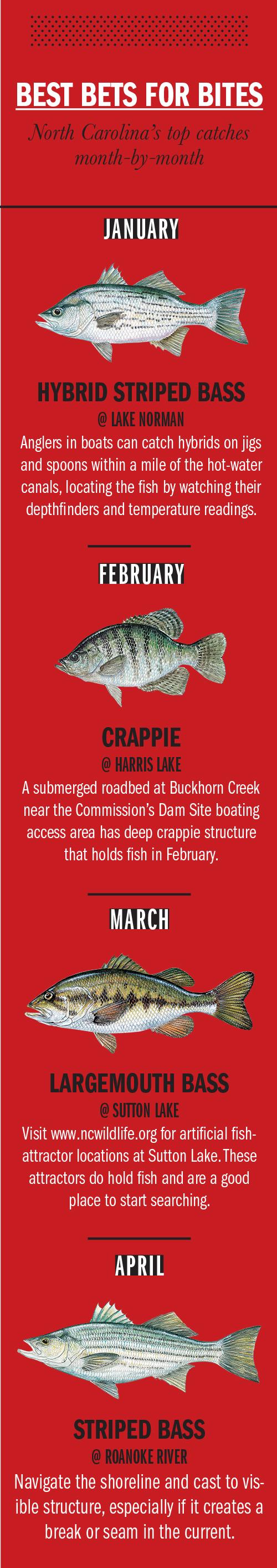 2018 North Carolina Fishing Calendar