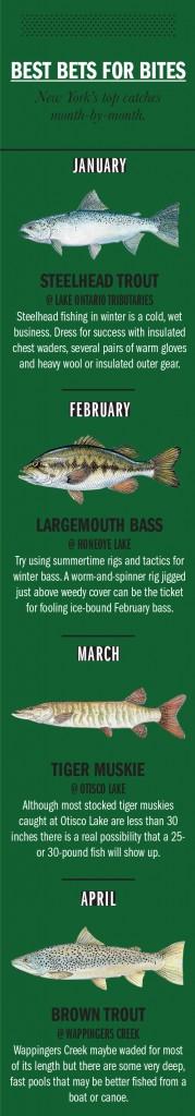 NY Fishing Calendar 1