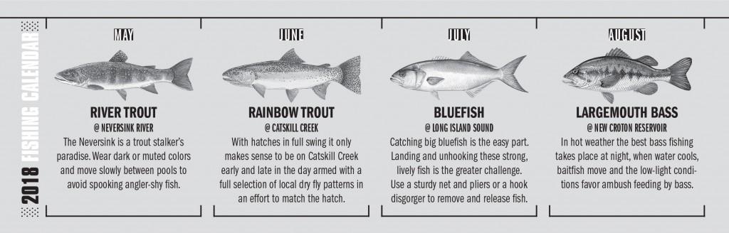 NY Fishing Calendar 2