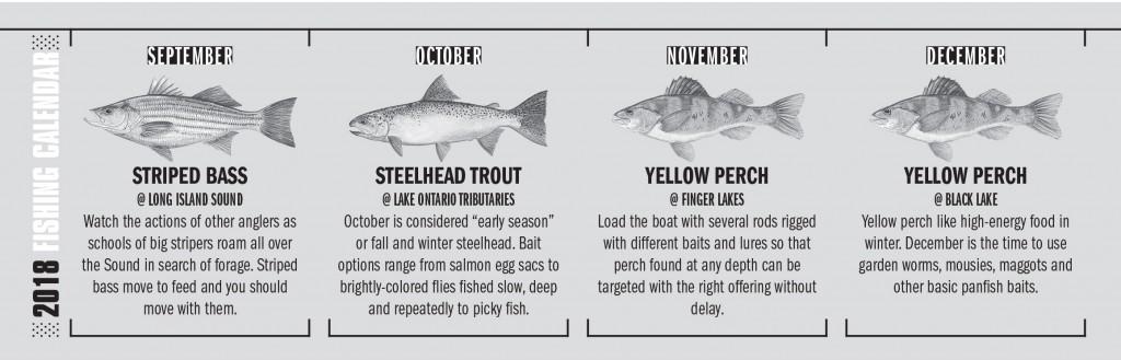 NY Fishing Calendar 3