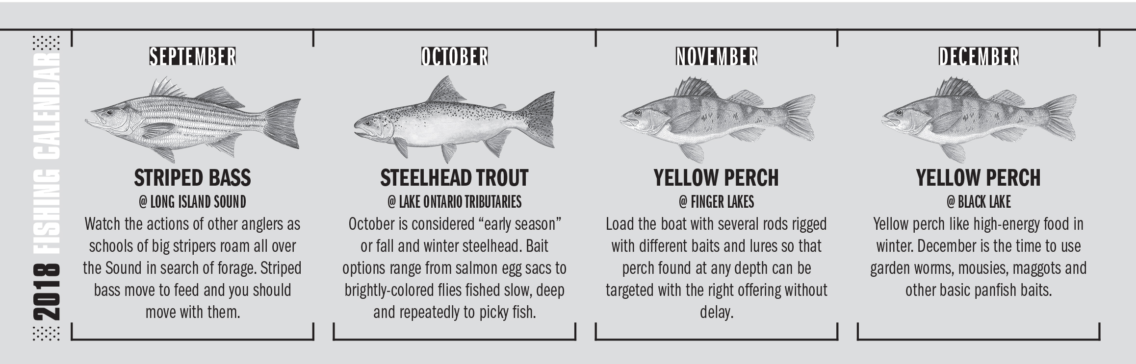2018 New York Fishing Calendar