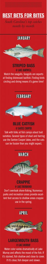 SC Fishing Calendar 1