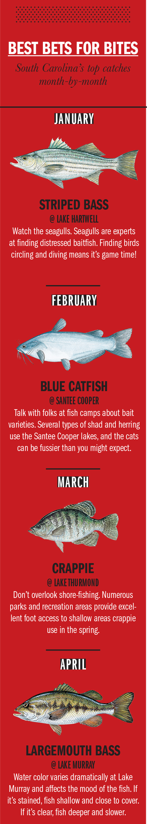 2018 South Carolina Fishing Calendar