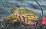 Here's a look at where the best smallmouth bass fishing is in Virginia. (Photo by Ron Sinfelt)
