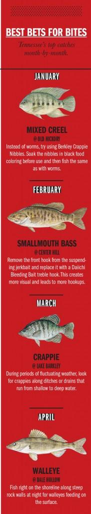 TN Fishing Calendar 1