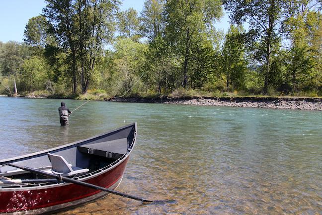 5 Steps to Steelhead Fishing Success
