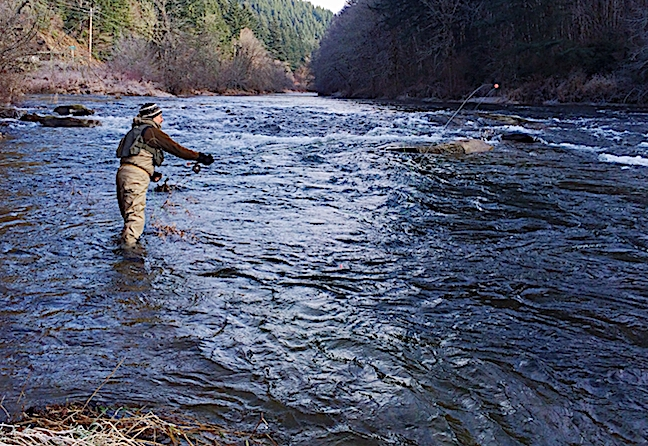Fly Fishing for Colorado Tailwater Trout