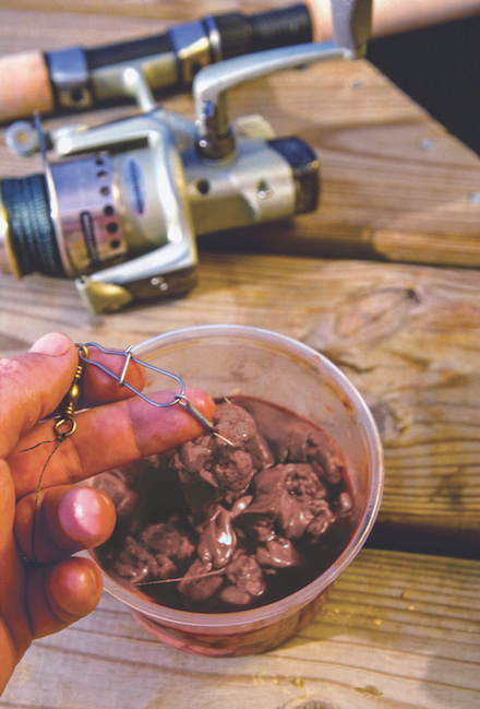 Beef liver for catfish bait