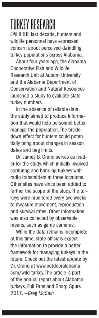Alabama Turkey Hunting Outlook Graphics