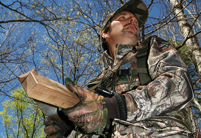 Arkansas Turkey Hunting Outlook Feature