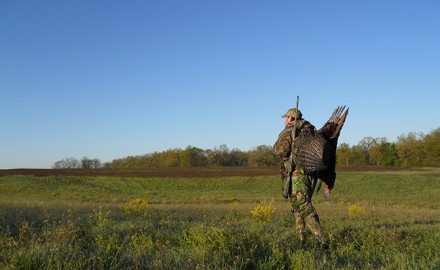 Kentucky Turkey Hunting Outlook Feature
