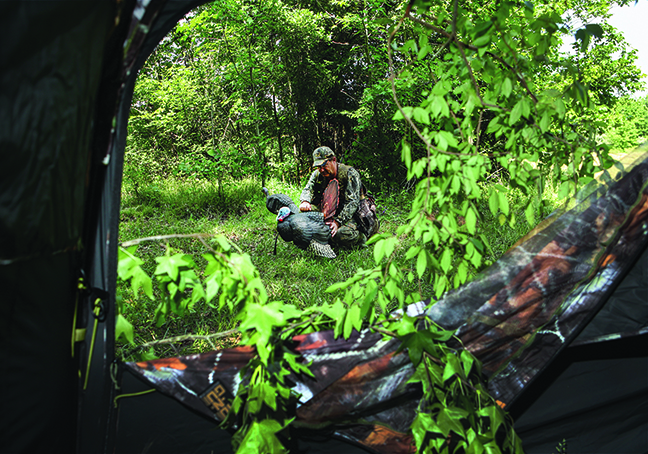 ML Turkey Hunting Outlook Feature