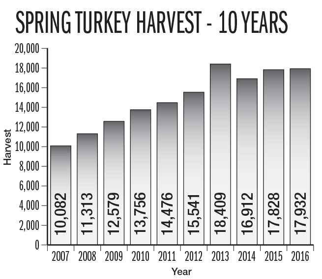 NC Turkey Hunting Outlook