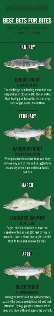 NG Fishing Calendar 1
