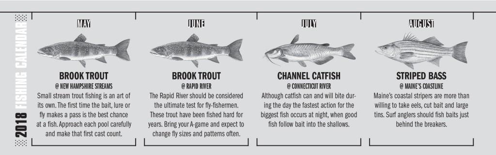 NG Fishing Calendar 2