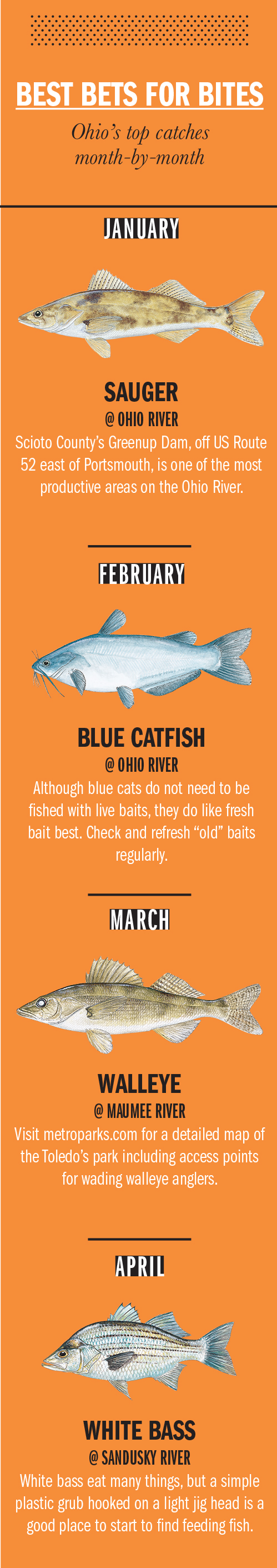 2018 ohio fishing calendar game fish for Fat fish blue toledo