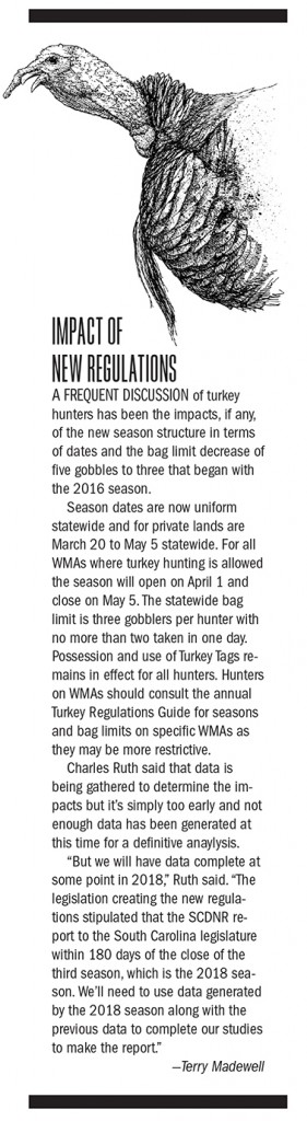 SC Turkey Hunting Outlook