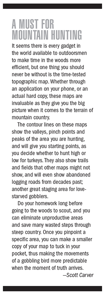 TN Turkey Hunting Outlook Feature