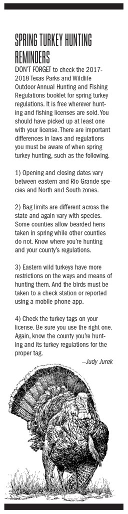 Texas Turkey Hunting Outlook Graphic