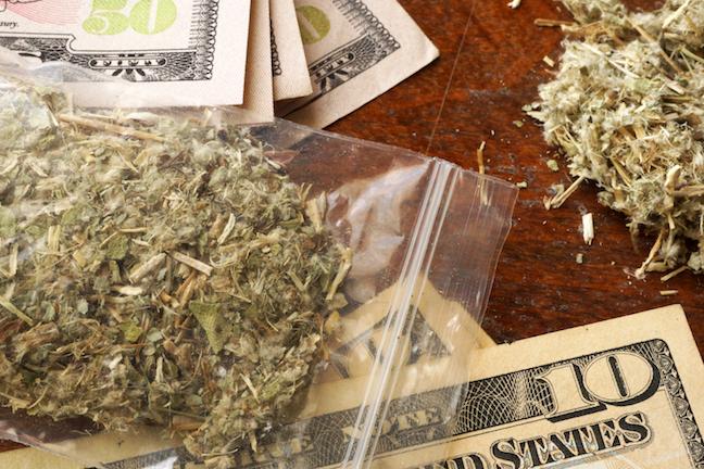 Wildlife Officers Find 17 Bundles of Pot Worth $600K