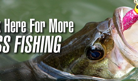 Soft plastics work in a vareity of situations throughout the year, and are especially good for