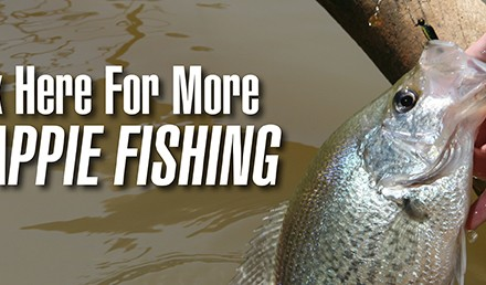 Crappie fishing offers an exciting opportunity for anglers of all skill levels.  Great Plains