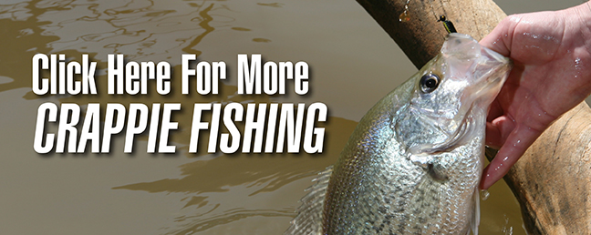Jig Fishing for Deep-Brush Crappie