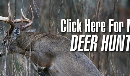 Most hunters use their trail cameras to monitor areas they already know hold deer. A better use is