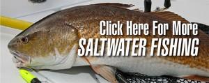 saltwater fishing