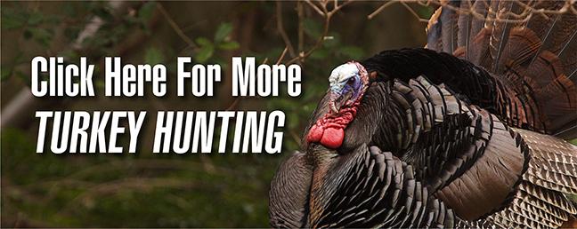Ground Blind Turkey Hunting Tips