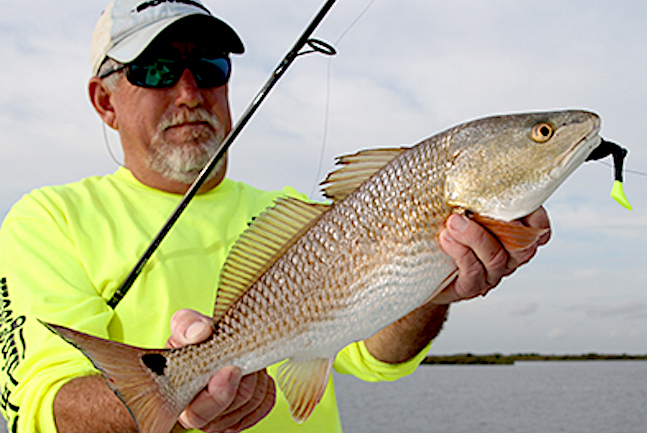 Bountiful Estuaries: Great Inshore Fishing on Gulf Coast