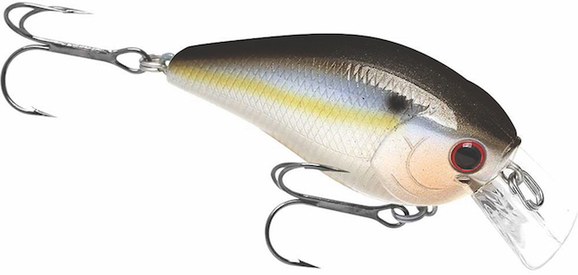 go-to bass baits