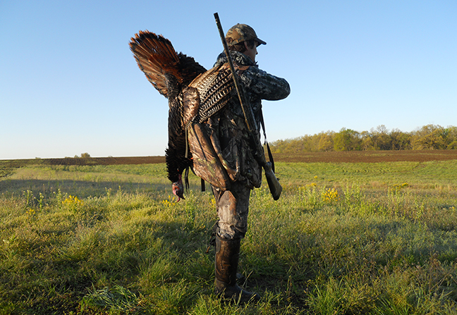 NY Turkey Hunting Outlook Feature