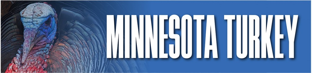 MN Turkey Hunting Outlook State Bar
