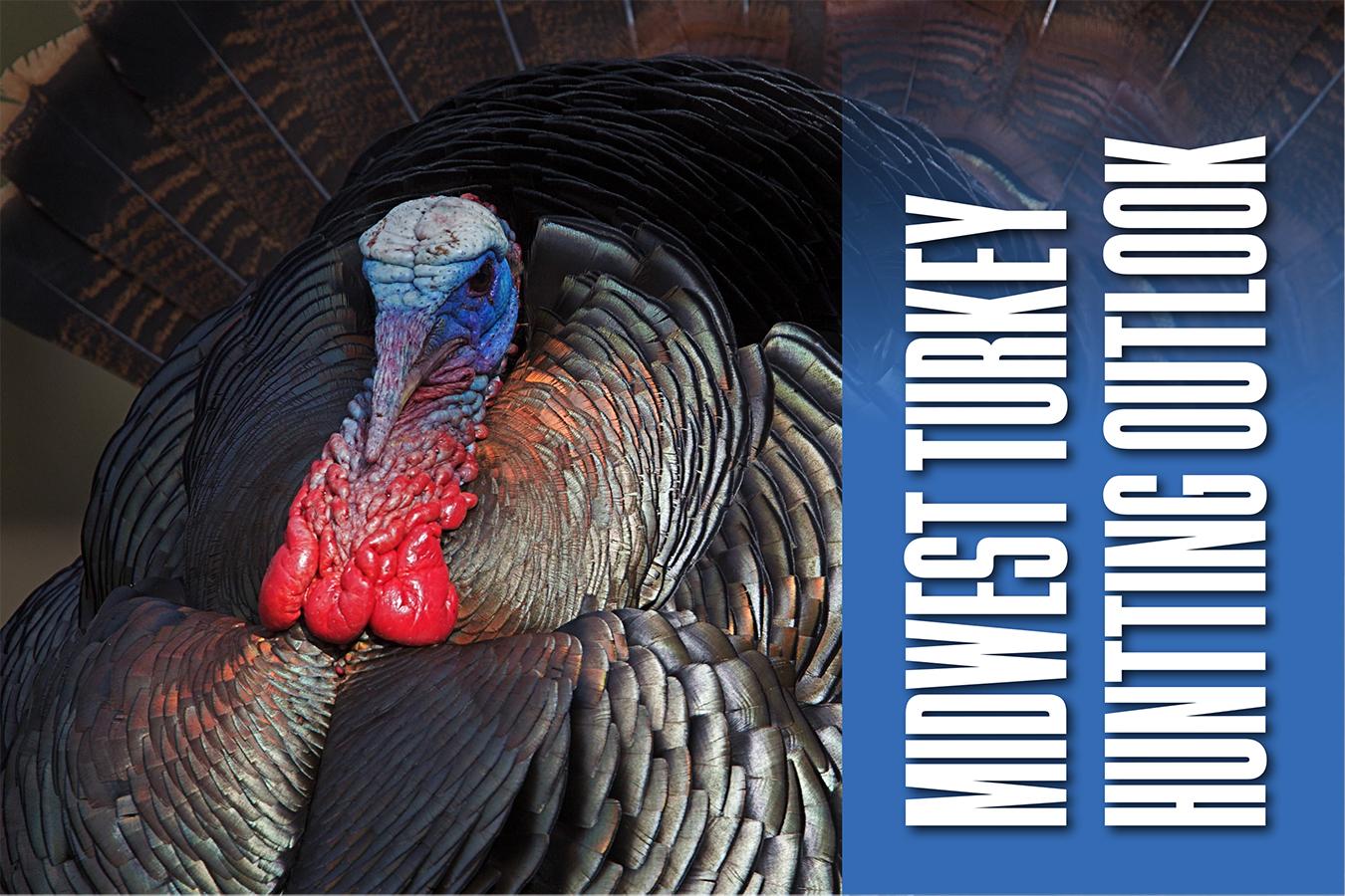 2018 Midwestern Turkey Hunting Outlook